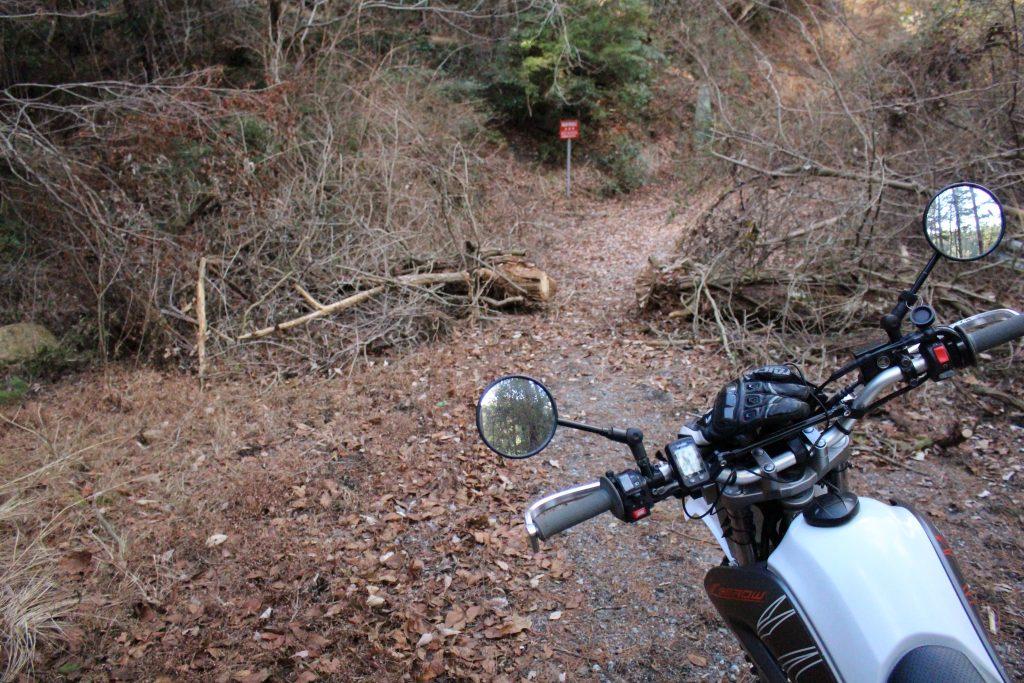 バイクと倒木