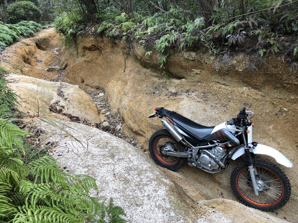 バイクと林道
